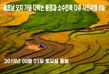 베트남 북부 오지 가을 다락논…